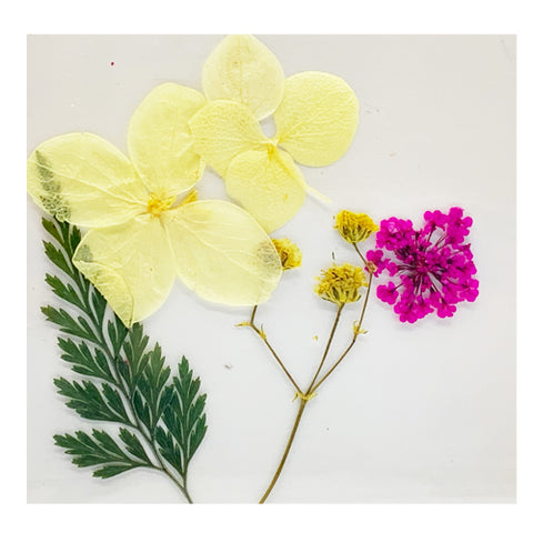 Leonelda Products Dried Nail Art Flowers in Yellow and Pink used for nail art
