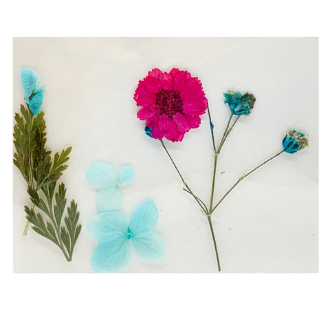 Leonelda Products Dried Nail Art Flowers in Aqua and Bright Pink used for nail art