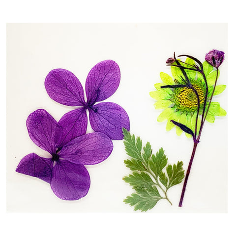 Leonelda Products Dried Nail Art Flowers in Purple and Bright Green used for nail art