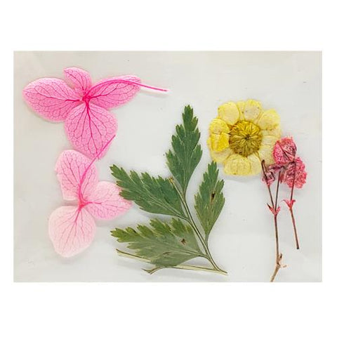 Leonelda Products Dried Nail Art Flowers in Pink and Yellow used for nail art