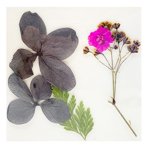 Leonelda Products Dried Nail Art Flowers in Grey and Bright Pink used for nail art