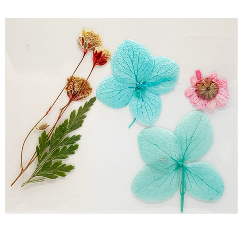 Leonelda Products Dried Nail Art Flowers in Light Blue & Pink used for nail art