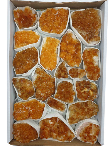 Citrine Lot Wholesale - Over 2.7 Kilos - odd-ball-crystals
