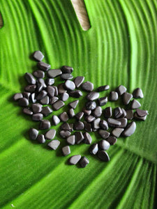 Hematite Chips 250 grams-Oddball Crystals