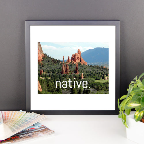 Colorado Native Canvas