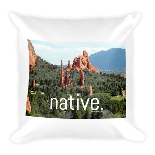 Colorado Native Pillow