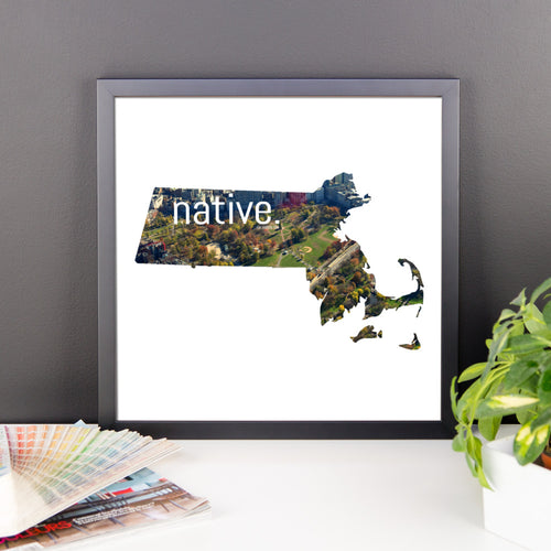Massachusetts Native Canvas