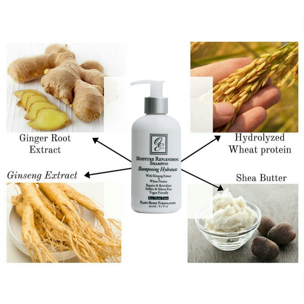 Moisture Replenishing Shampoo with Ginseng Extract & Wheat Protein