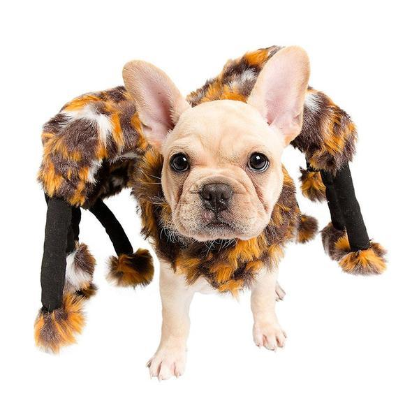 Novelty Spider Costume