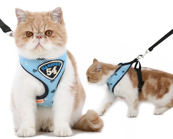 Harbour 54 Cat Harness Leash