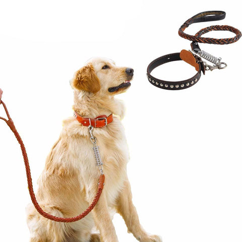 Pet Set Lease and Collar