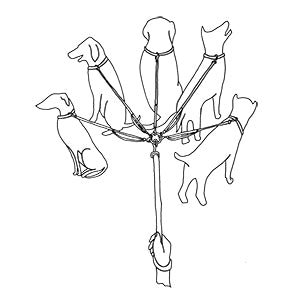 Drawing of the Lead-All Leash System by Shauna Eve