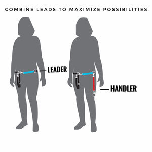 The Handler - Leather