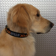 Buffalo Wing Dog Collar