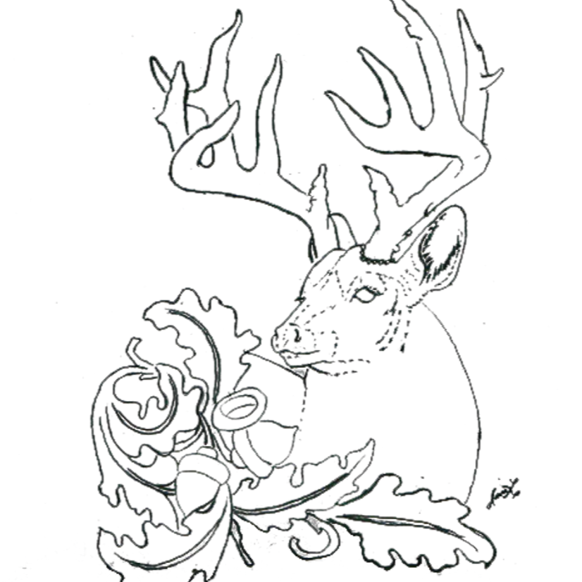 Free Pattern for White-Tailed Deer Figure Carving Workshop