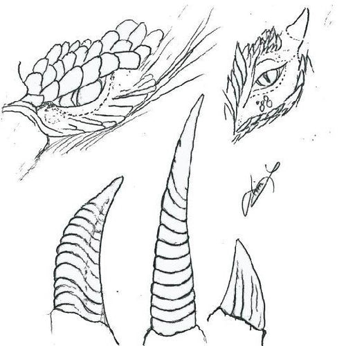 Free Leathercraft Pattern for Figure Carving Dragons