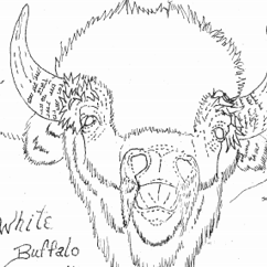 The White Buffalo Pattern by Robb Barr