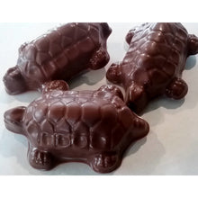Chocolate Pecan - Caramel Turtles  Milk  or Dark / 6 count