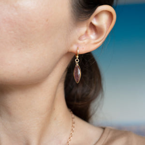 Dangling Garnet Earrings