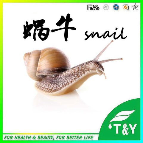 High Quality Helix Extract With Protein, Pure Helix Aspersa Snail Extract Powder, Helix