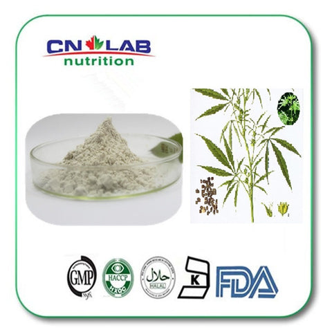 GMP factory hemp protein extract powder 100g