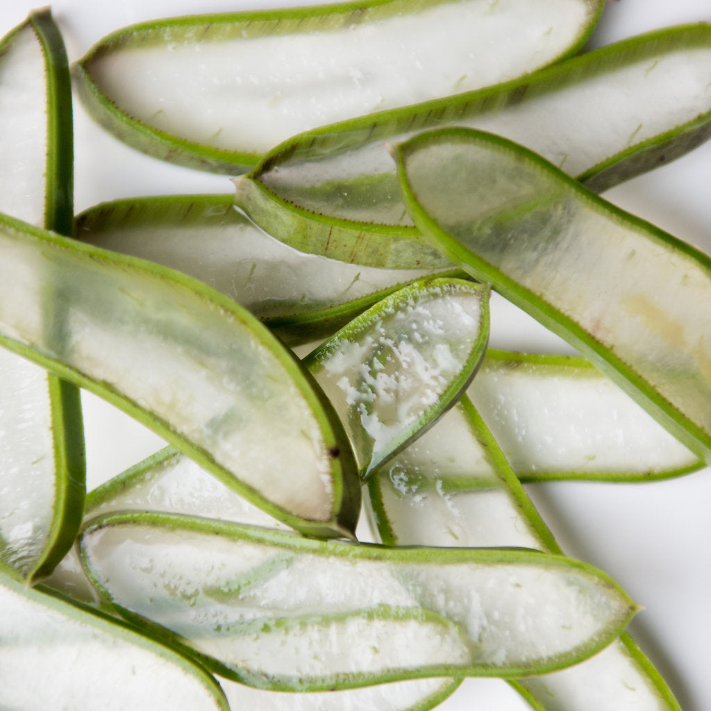 aloe vera - the super beauty plant