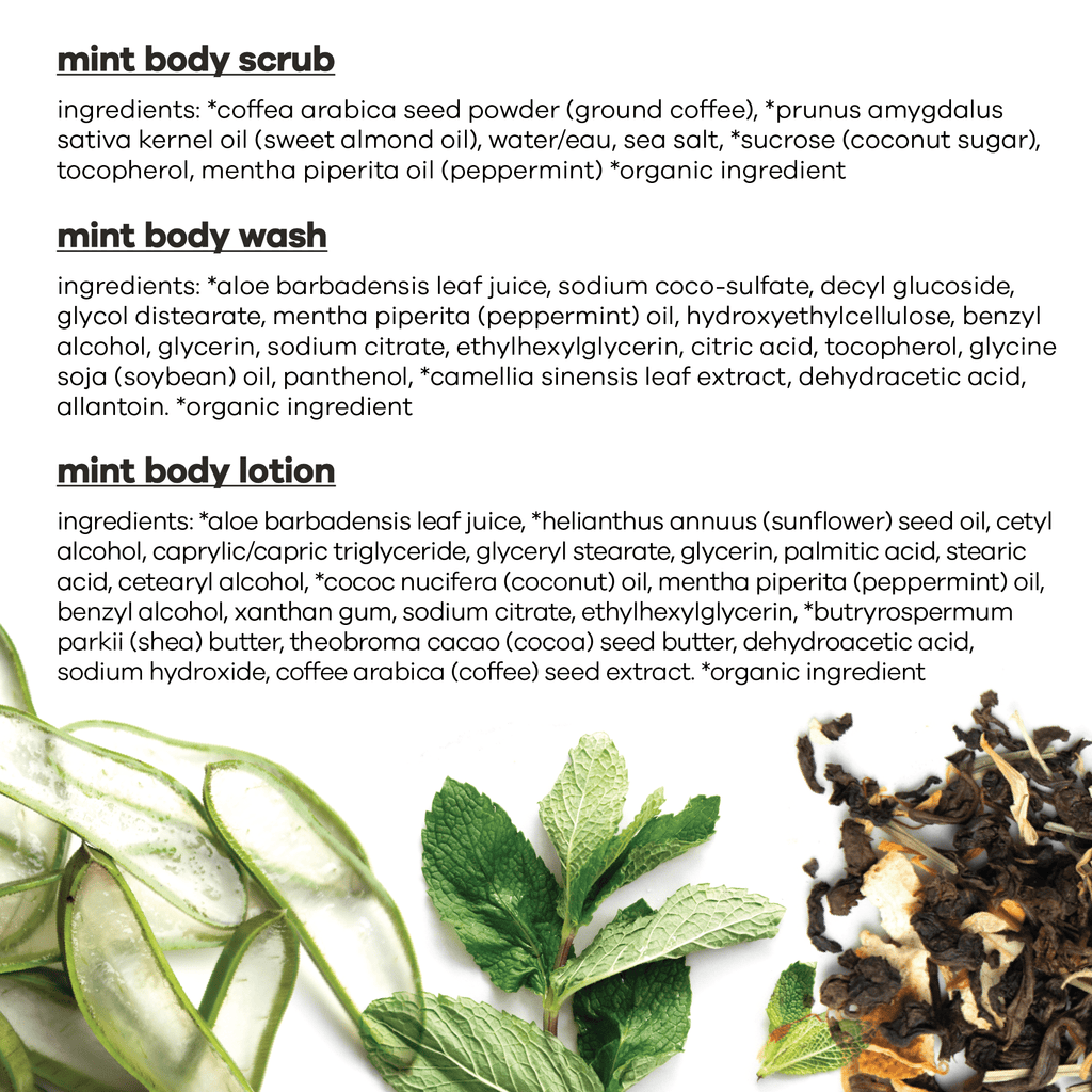 invigorating mint bundle