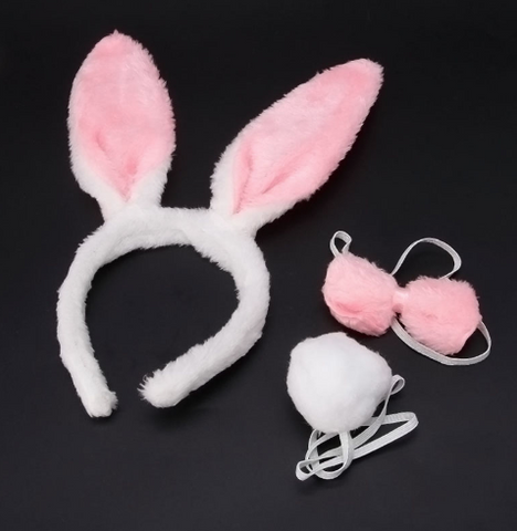 Rabbit accessories