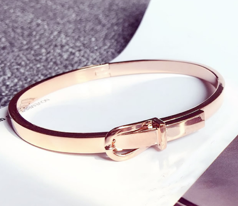 Stainless steel buckle bangle