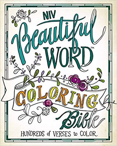 Coloring Bible cover