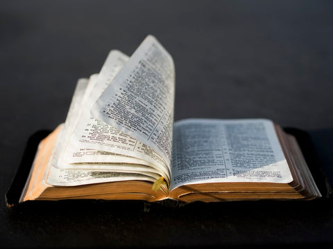 Opened Bible in the wind