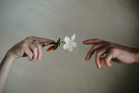One hand offering a flower to another