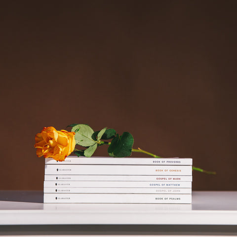 Yellow rose resting on a stack of Alabaster Bibles