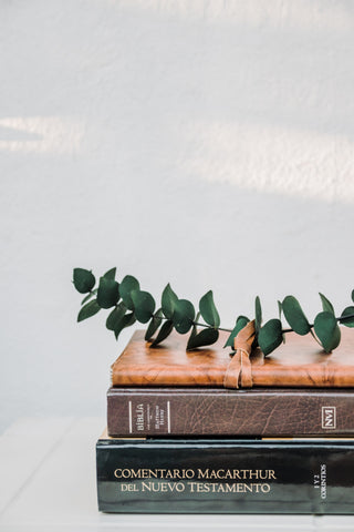 Eucalyptus leaves atop a stack of Biblical study books