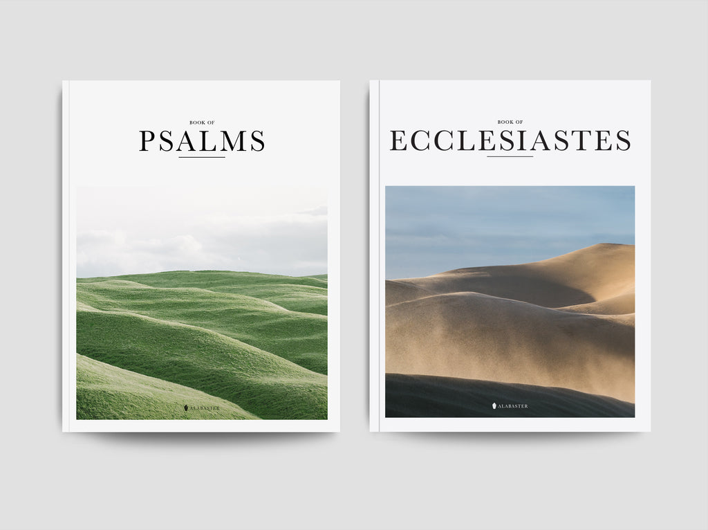 Psalms & Ecclesiastes (Softcover)