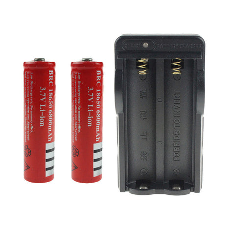 Two 18650 Rechargeable Lithium Batteries with Battery Charger