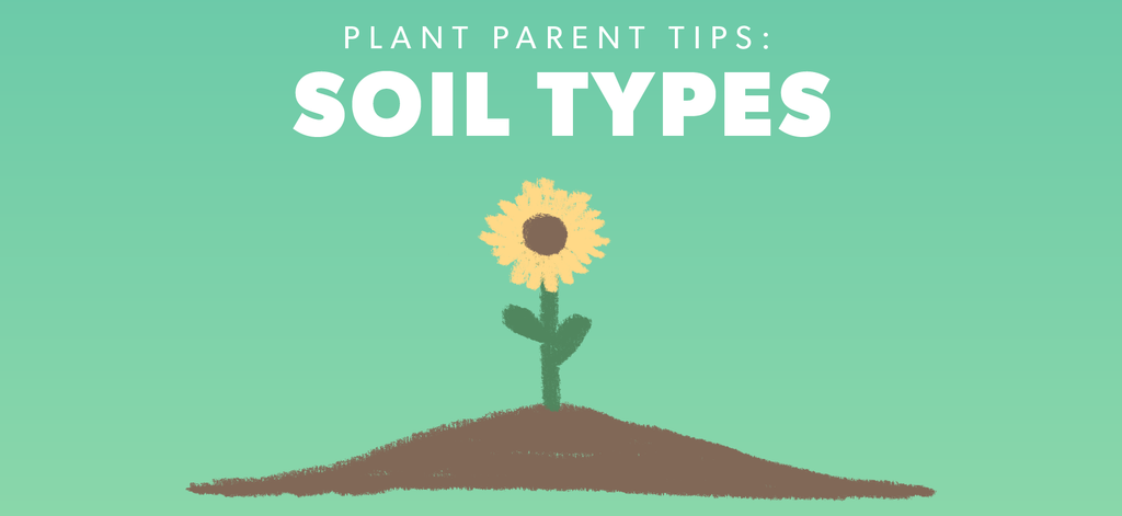 Soil Type and Amendment