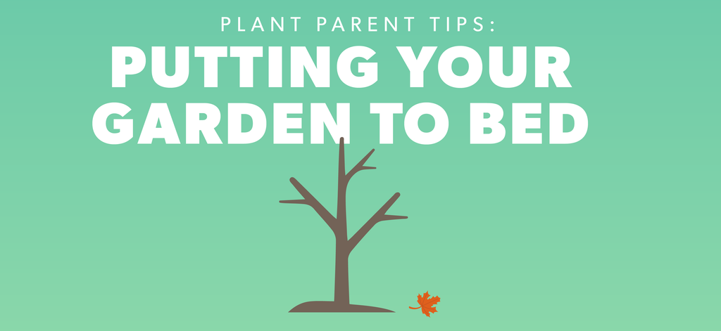 Putting Your Garden To Bed