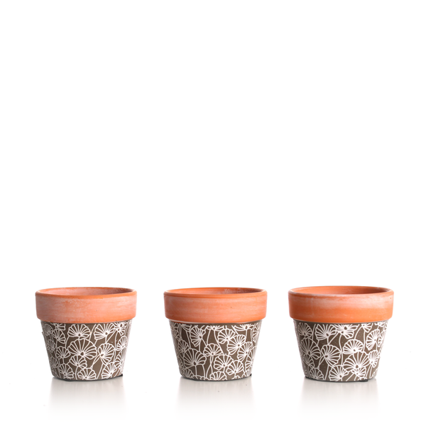 Gingko Leaf MiniPot (Pack of 3)