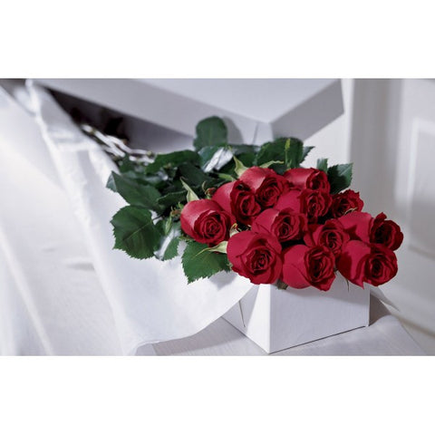 E16 Dozen Long Stem Red Roses