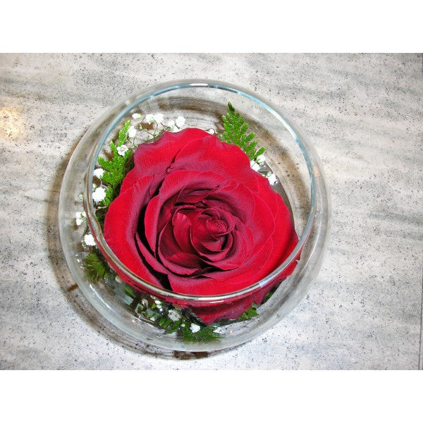 W14 Rose in a Bowl