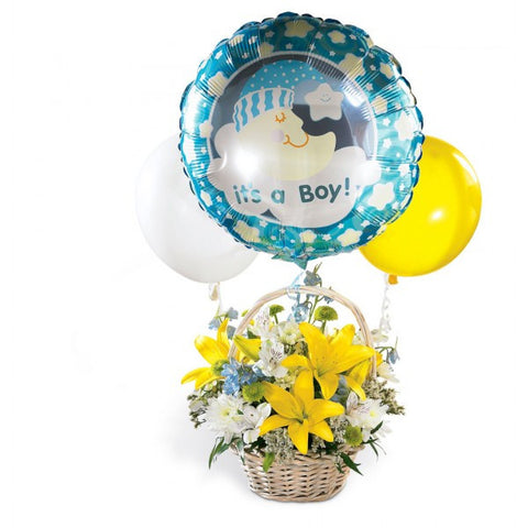WB8 Welcome Baby Boy
