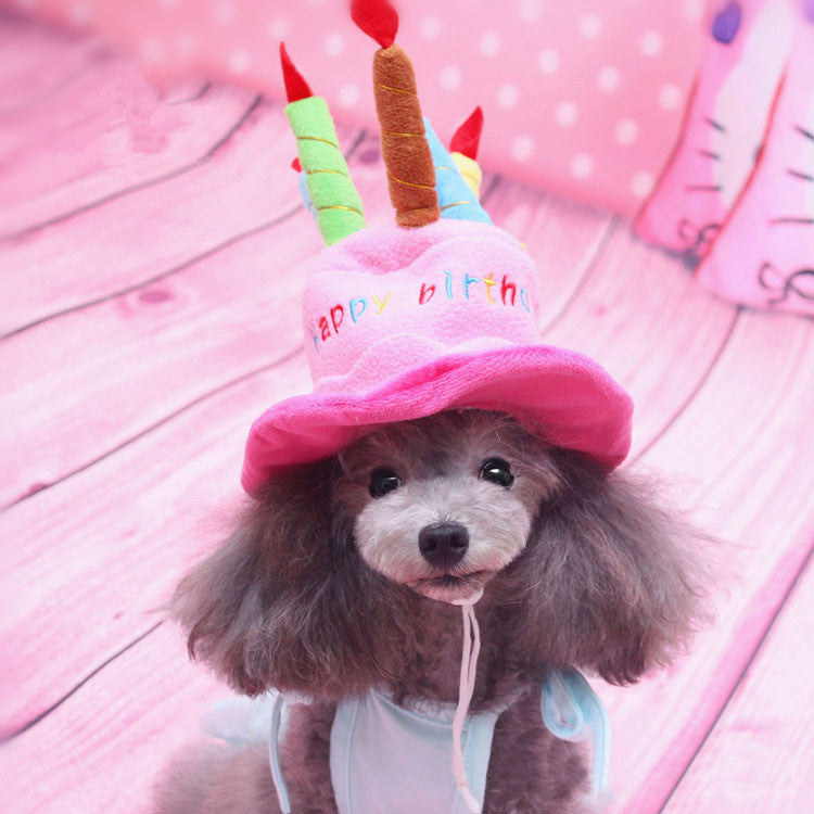 Birthday Cake Cap for Cat and Dog