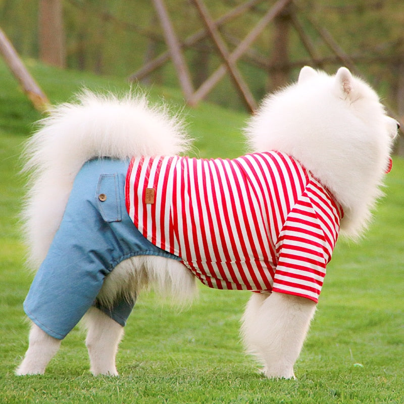 Striped T-Shirt and Trousers for Large Dog