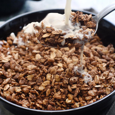 Nutrient Survival - Chocolate Grain Crunch