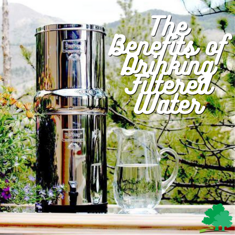 Picture of a Berkey with a pitcher of water with a phrase Why It's Important To Filter Your Water