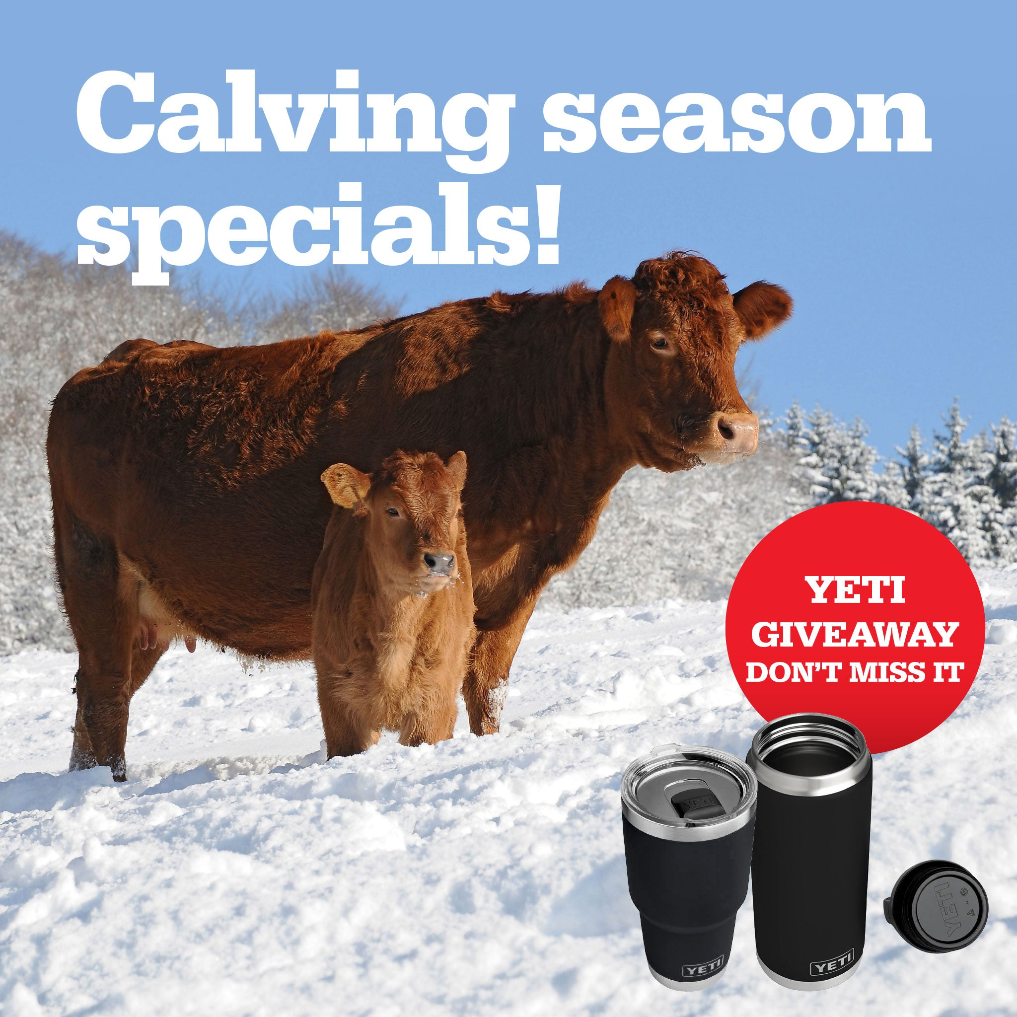 CALVING SEASON SPECIALS-REMEDY ANIMAL HEALTH PRODUCTS CANADA
