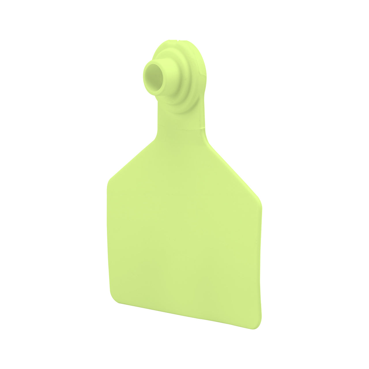 Z Tags Z2 2 Piece Large Blank (Light Green) 25 Pack - 2 Piece Large Blank Tag Z Tags - Canada