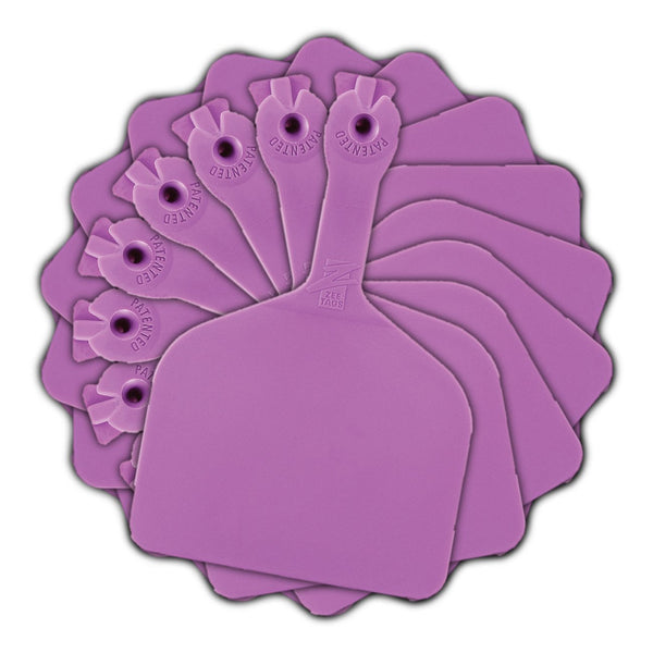 Z Tags Feedlot Blank - Purple (50 Pack) - Feedlot Tags Blank Z Tags - Canada