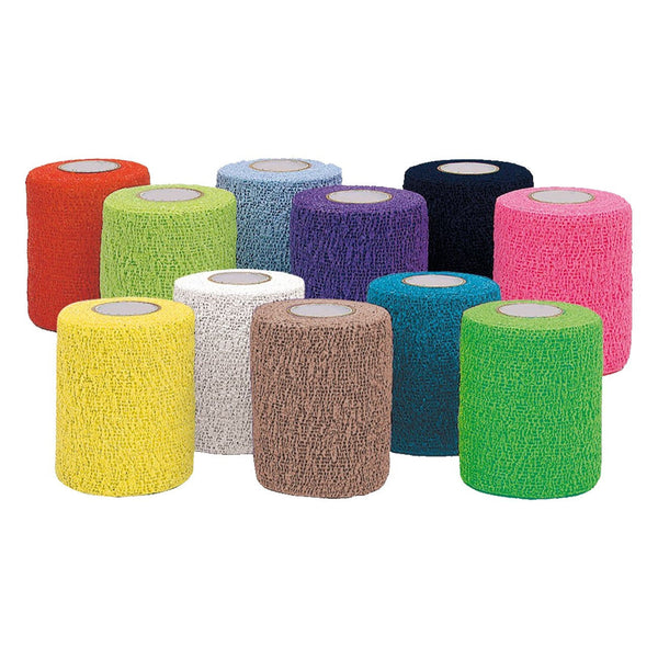 "Andover Petflex 3""x15' colour pack (24)"